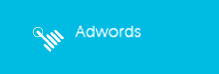 SEO- Adwords